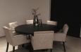 Luxe stoelen in moderne stijl velours
