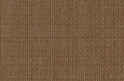 light-brown-115.jpg