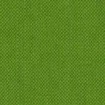 groen-55.jpg