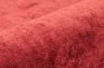 110145-Monza-8-rood