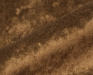 morescocs-3685-8-fr-project-gordijnen-meubelstoffen-goud-bruin-100_trevira_cs-uni-wasbaar-interieur-interieurstoffen-velvet-velours