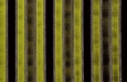 toucan-5003-8-groen-meubelstoffen-velours-wasbaar-kamerhoog-strepen