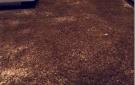 Luxe karpet op maat velours design